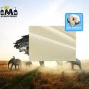 CHEMISE SAFARI - 100 % COTON - COUTURE & DIAGONALE - SAISON 2021 40,99 € | My Major Market
